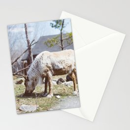 Caribou (Montreal, Canada) Stationery Cards