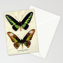 Butterfly15_Trogonoptera Brookiana • pair Stationery Cards