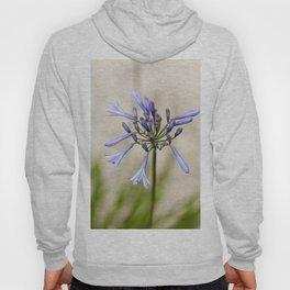 Blue flower Hoody