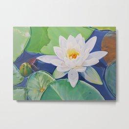 Awaken - water lily painting Metal Print