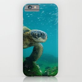 Galápagos Islands, Ecuador iPhone Case