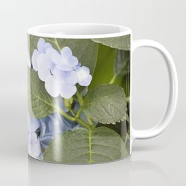Longwood Gardens - Spring Series 256 Coffee Mug