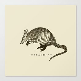 Armadillo power Canvas Print