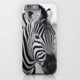 Portrait of a Plains Zebra bw iPhone Case