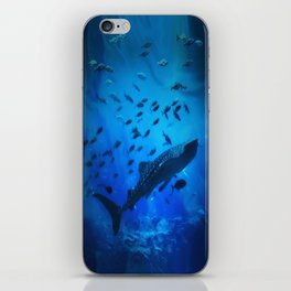 A Whale of a Teacher iPhone Skin