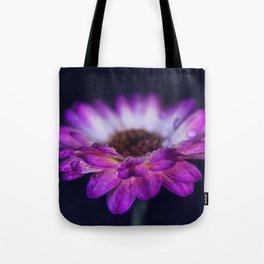 Purple Gerbera Daisy Closeup Tote Bag