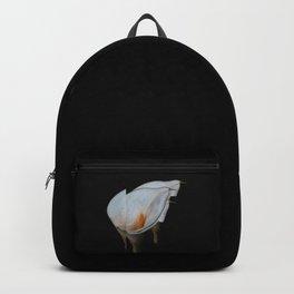 The Eternal Backpack