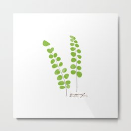 Button Fern Illustration Botanical Print Metal Print