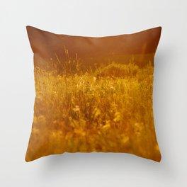 flower field at sunset Throw Pillow