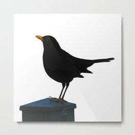 Blackbird Vector Metal Print
