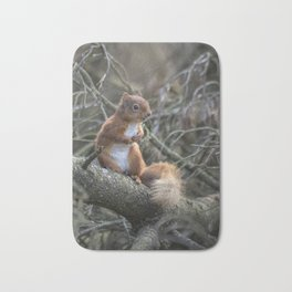 Cute little wild woodland red squirrel in the branches Bath Mat