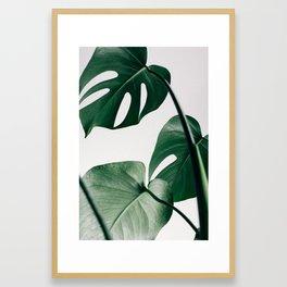 Monstera Art Print Framed Art Print
