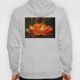 Red Rose Glowing Hoody