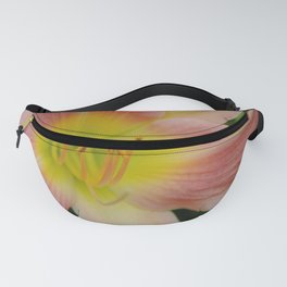 Peaches and Cream Lily Fanny Pack