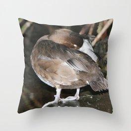 Sleeping Duck Throw Pillow
