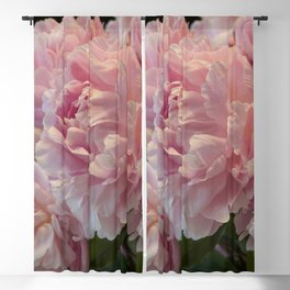 Pink Peony Passion Blackout Curtain