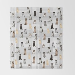Sit, Smile Large Dogs On Gray Throw Blanket