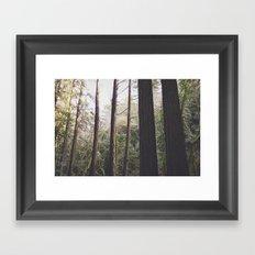 TheW o u l d s Framed Art Print
