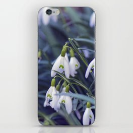 Snowdrop Flower iPhone Skin