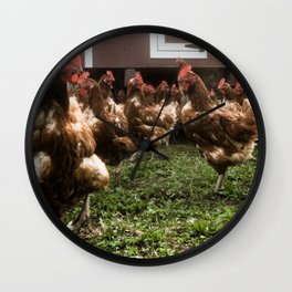 Chickens at the hen house Wall Clock