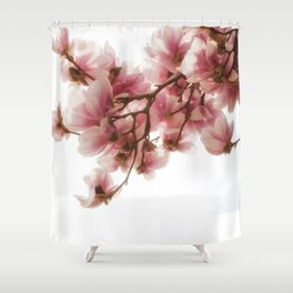 Magnolia tree, pretty pink blooms Shower Curtain