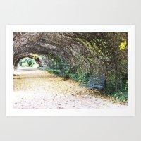 A Scenic Walkway Art Print
