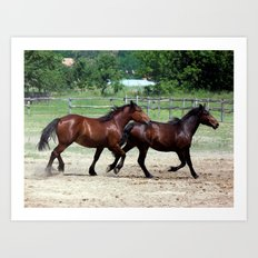 Hungarian Puszta Horses Art Print