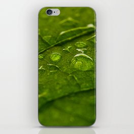 Green Bubbles 2 iPhone Skin