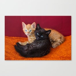 two cute kittens cuddle on orange sofa  Canvas Print