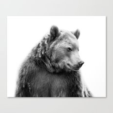 Bear Portrait Canvas Print