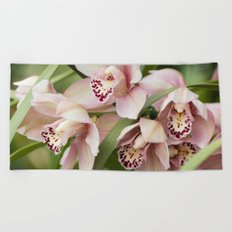 orchid in bloom Beach Towel