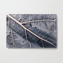 Organic Winter Decay Metal Print
