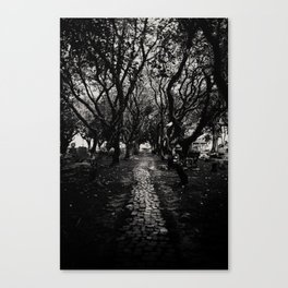 Through the garden of unearthly delights Canvas Print