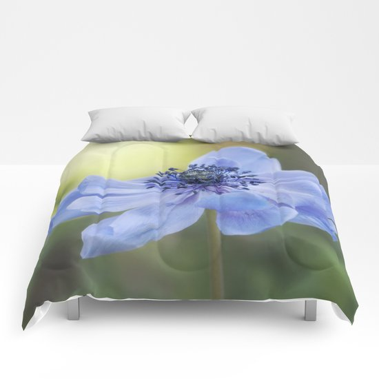 Fallen in BLUE - Blue Anemone Flower at Backlight Comforters