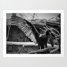 Wing Span Art Print
