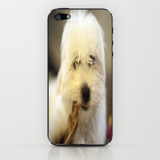 Moriarty & The Bully Stick iPhone & iPod Skin