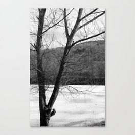 Frozen in Time (b/w) Canvas Print