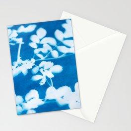 Botanical Sunprint Stationery Cards