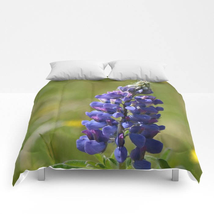 Nootka Lupine Comforters