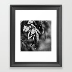 Rainy Days I Framed Art Print