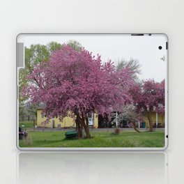 Placidity Along Highway 97 Laptop & iPad Skin