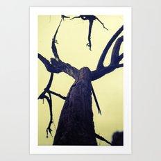 Aragosta Art Print