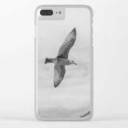 seagull in grey Clear iPhone Case
