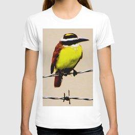 Kiskadee T-shirt