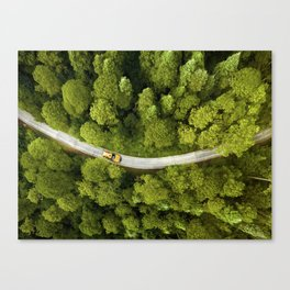 New York in Central Park Canvas Print