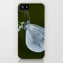 """Lady white butterfly """"Lepidea sinapis"""" iPhone Case"""