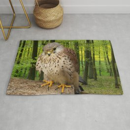 Little hawk -  wildlife photography Rug
