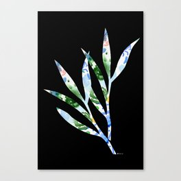 January leaves -watercolour on black background Canvas Print