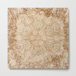 Petrified Wood Kaleidoscope Metal Print