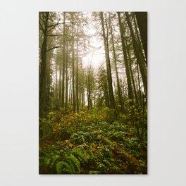 Golden // Forest Canvas Print